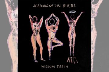 Jealous of the Birds: Wisdom Teeth